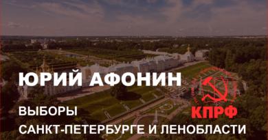 ЮРИЙ АФОНИН ПРОВЕЛ СОВЕЩАНИЯ ПО ВЫБОРАМ В САНКТ-ПЕТЕРБУРГЕ И ЛЕНОБЛАСТИ
